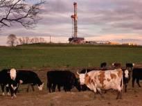 web-fracking-1